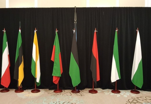 Consultations on regional flags should conclude by April